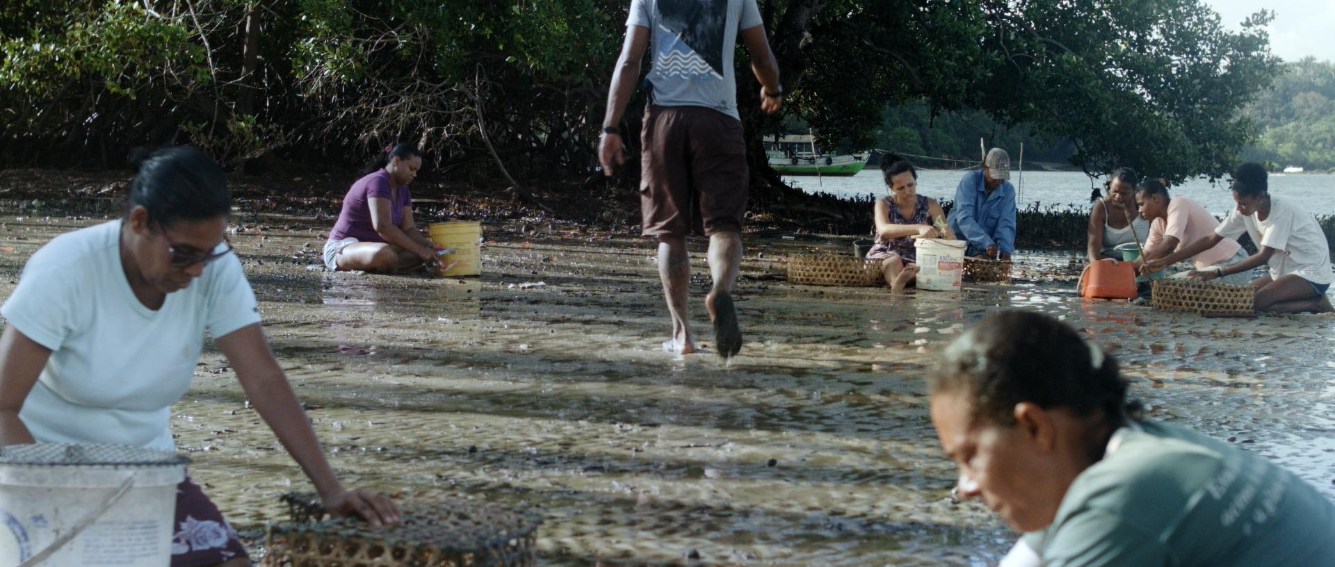 Island_Ilha (2)